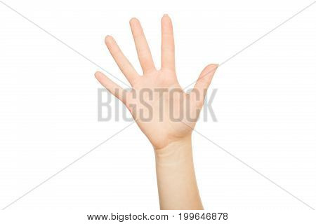 Woman's hand making take five hand gesture, crop, cut out, isolated on white background.