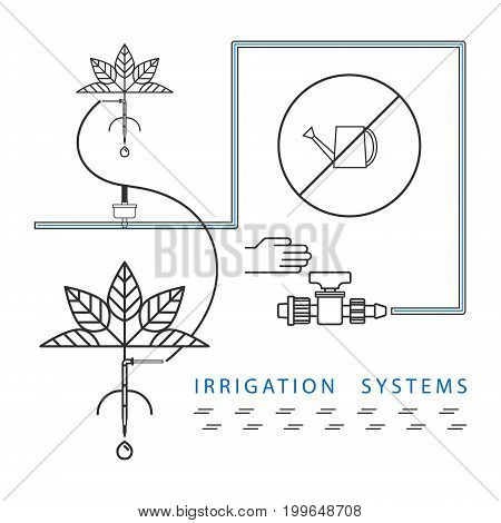 Infographics for automatic drip irrigation systems. Line style.