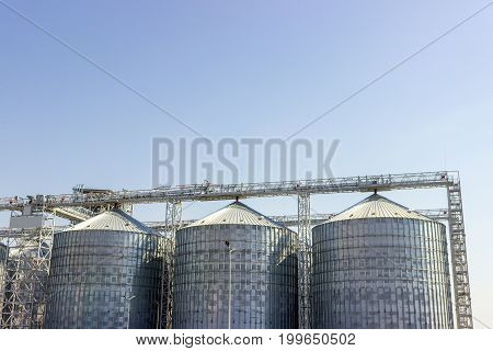 Cereal silos under the blue sky. Industrial storage.