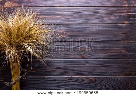 Wheat stems on wooden background Harvest concept