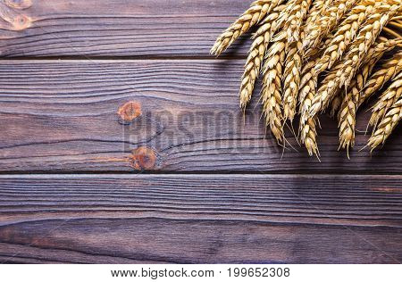 wheat on wooden background. top view Harvest concept