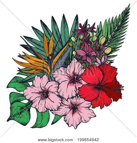 Vector composition of hand drawn colorful tropical flowers, palm leaves, jungle plants, paradise bouquet. Beautiful floral illustration isolated on white background
