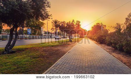 Beautiful Dawn Floods Stone Walkway