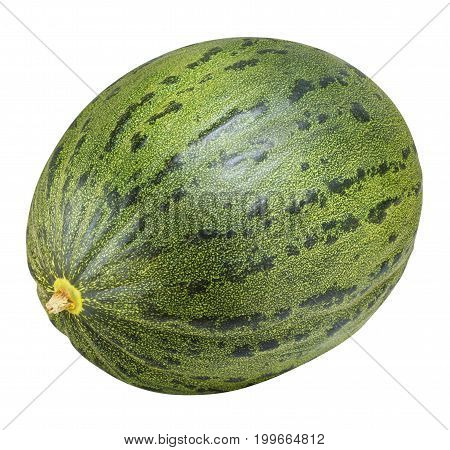 piel de sapo melon isolated on white background