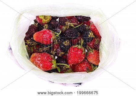 Preservation of vitamins in frozen berries. Studio Photo