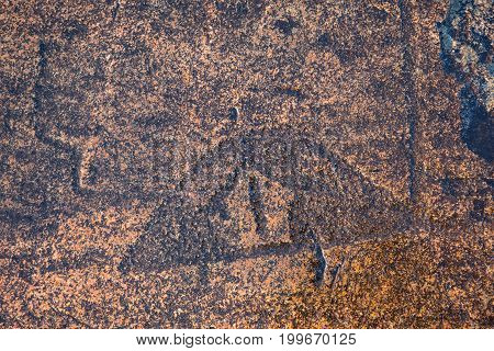 ancient rock carvings petroglyphs on the shore of Onega Lake carved on a granite plate . Age of object - 5000-6000 years. Cape Besov Nos, Karelia, Russia.
