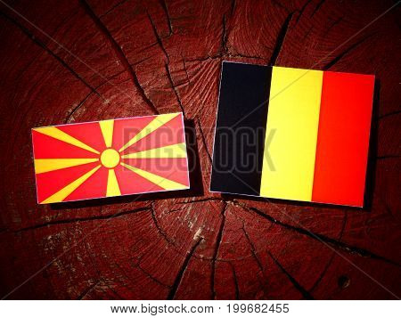 Macedonian Flag With Belgian Flag On A Tree Stump Isolated