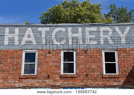The word HATCHERY remains on an old brick building once used in a rural setting for baby chicks, poultry, and feeds.