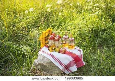 Beautiful Autumn Picnic With Red Apples, Apple Juice And Sunflowers In A Field Of Grasses And Wildfl