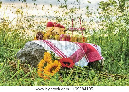 Sunflower Bouquet And Simple Picnic With Apples And Juice In A Field Of Wildflowers