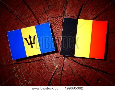 Barbados Flag With Belgian Flag On A Tree Stump Isolated