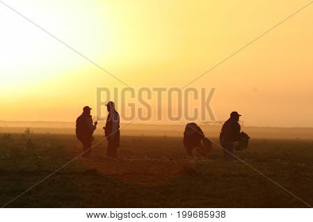 migrant workers in the early morning sun