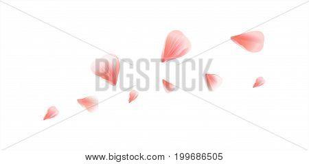 Vector_bg_pink_petals_on-white_100.eps