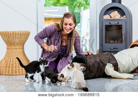 Woman with cute kittens and playing tunnel on floor in apartment