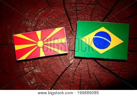 Macedonian Flag With Brazilian Flag On A Tree Stump Isolated