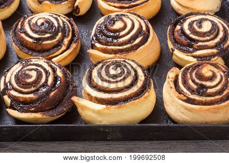 Freshly baked cinnamon rolls buns with cocoa