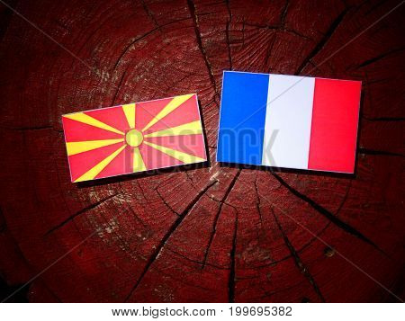 Macedonian Flag With French Flag On A Tree Stump Isolated