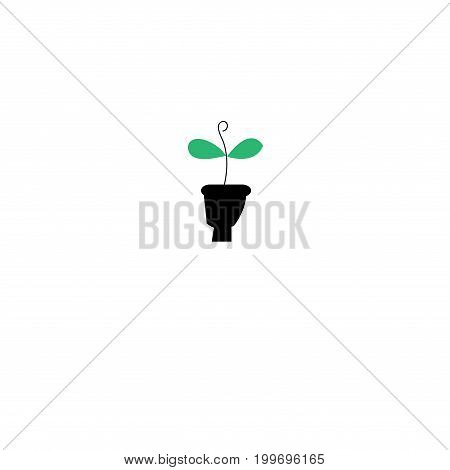Graphics silhouette icon eco green sprout on white background