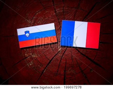 Slovenian Flag With French Flag On A Tree Stump Isolated