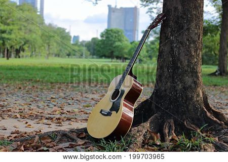 Acoustic guitar leaning against tree in the park.