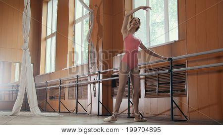 Graceful girl in pink dress and pointe shoes ballerina practicing in the Studio, elements of dance, telephoto
