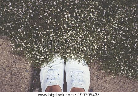 Feet And Summer Flowers