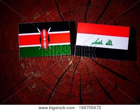 Kenyan Flag With Iraqi Flag On A Tree Stump Isolated