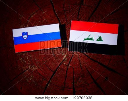 Slovenian Flag With Iraqi Flag On A Tree Stump Isolated