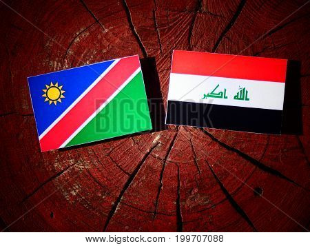 Namibian Flag With Iraqi Flag On A Tree Stump Isolated