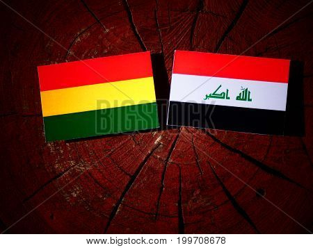 Bolivian Flag With Iraqi Flag On A Tree Stump Isolated
