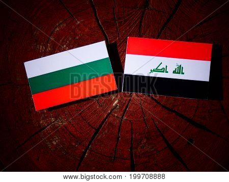 Bulgarian Flag With Iraqi Flag On A Tree Stump Isolated