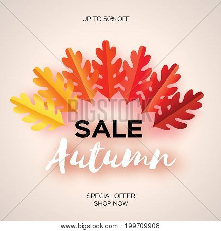 Autumn Sale Paper Cut leaves. September flyer template. Space for text. Origami Foliage. Oak. Fall leaf poster background. Vector illustration.