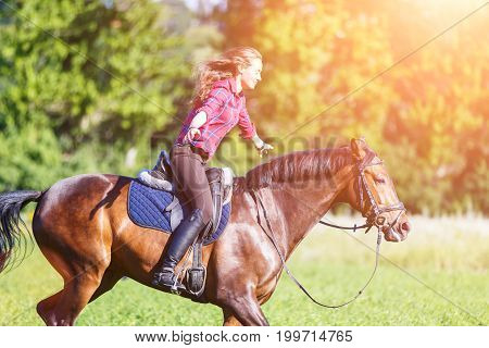 Happy young woman riding galloping horse at sunny summer day. Freedom equestrian concept image