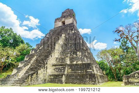 View of maya pyramid in national park Tikal in Guatemala