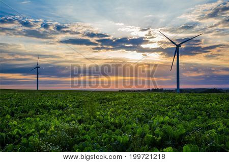 Windmills for electricity production against the background of beautiful sunset ecology nature conservation