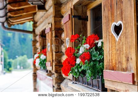 Typical bavarian or austrian wooden window with red geranium flowers on house in Austria or Germany.