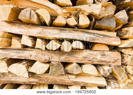 Timber trunks and logs on a lumberyard