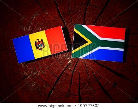 Moldovan Flag With South African Flag On A Tree Stump Isolated
