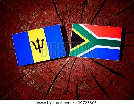 Barbados Flag With South African Flag On A Tree Stump Isolated