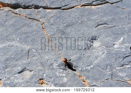 View on a Grey Rock with Cracks. Close-up of a Rock Object. Natural Stone Texture