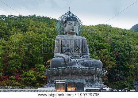 Buddha statue at Sinheungsa Temple in Seoraksan National Park South korea