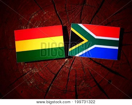 Bolivian Flag With South African Flag On A Tree Stump Isolated