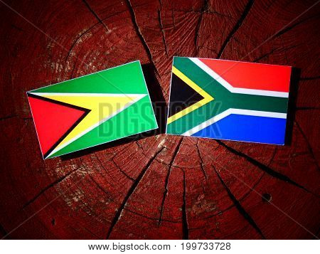 Guyana Flag With South African Flag On A Tree Stump Isolated