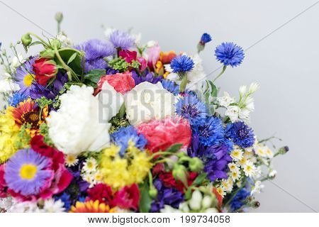 Bouquet of wildflowers. Bunch of wild herbs and flowers from the field