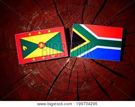 Grenada Flag With South African Flag On A Tree Stump Isolated