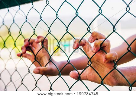 In the daytime, a boy's hand is holding a fence made out of a steel mesh cage.