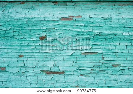 Old wooden wall in cyan color. Blue wall texture with tatters. Aquamarine. Craquelure. Painted rustic panel. Abstract board closely of sea water color for design, web, sites, interior, scrapbook.