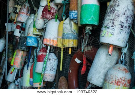 bunch of lobster buoys hanging on the wall