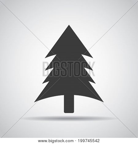 Spruce icon with shadow on a gray background. Vector illustration
