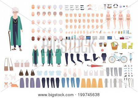 Old lady character constructor. Trendy granny creation set. Different grandmother postures, hairstyle, face, legs, hands, clothes, accessories. Vector cartoon illustration Front side back view